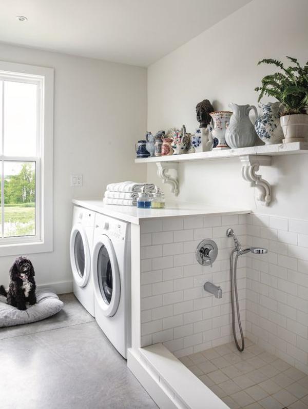 stylish-laundry-with-dog-space