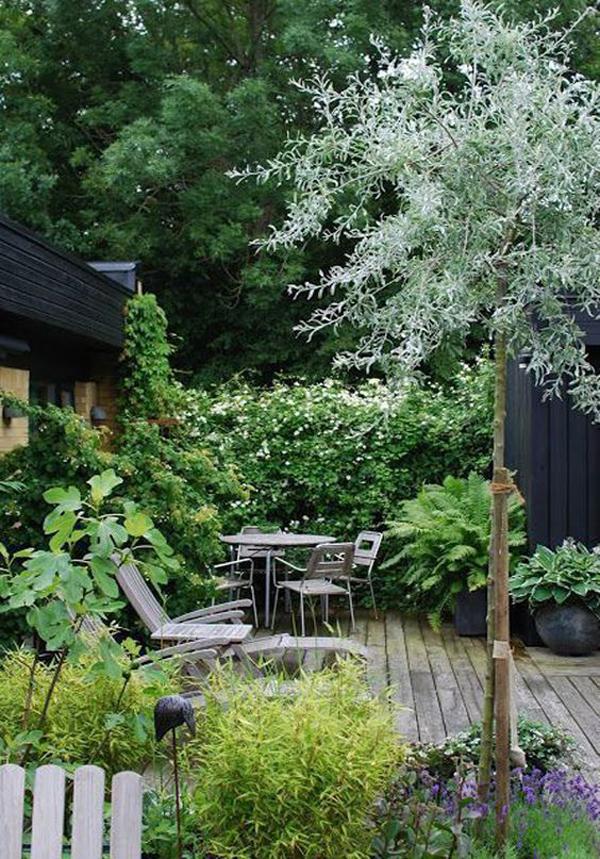 urban-jungle-patio-deck