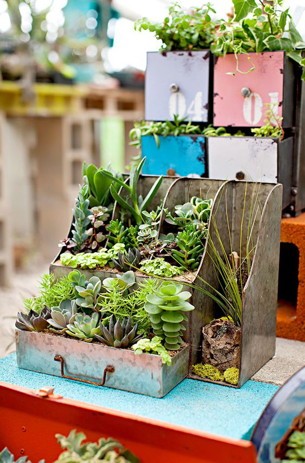 vintage-drawer-succulent-containers