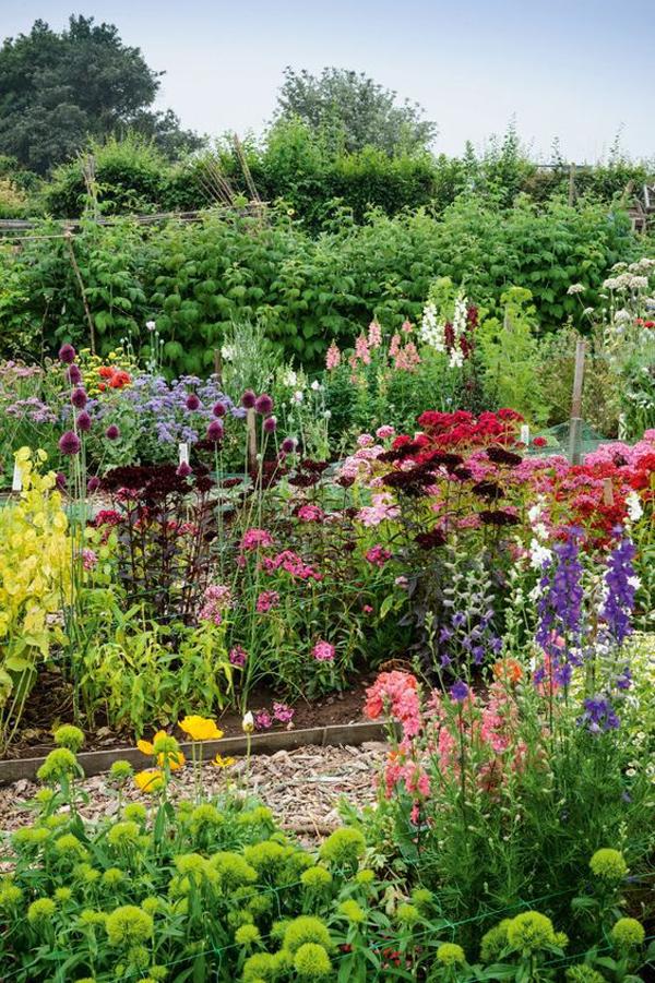 backyard-flower-raised-garden