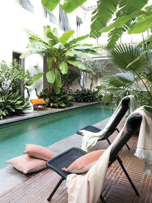 backyard-tropical-pool-landscaping
