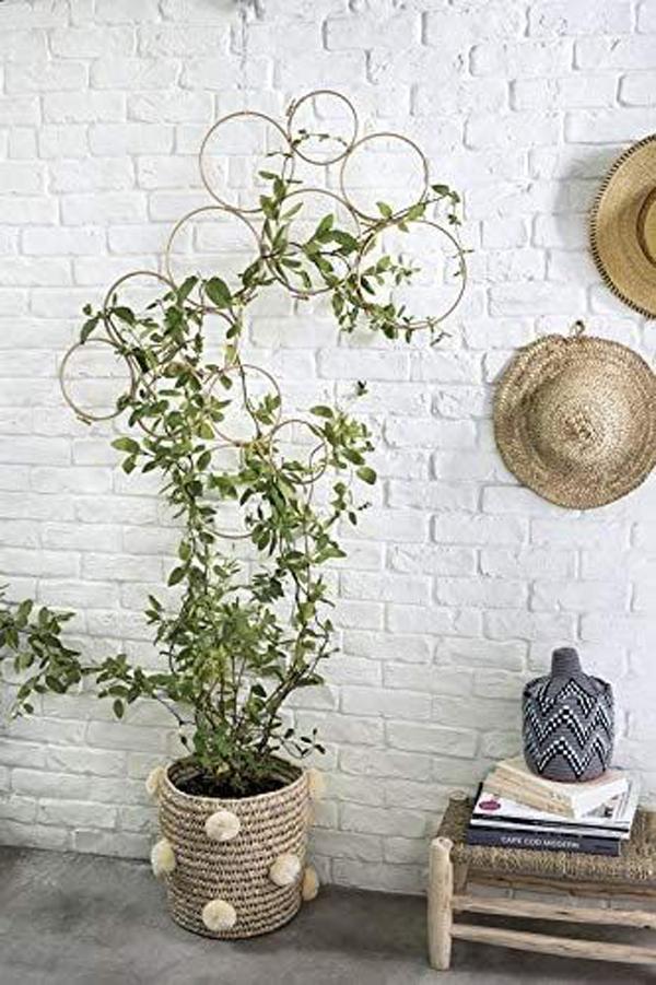 bamboo-diy-plant-trellis-ideas