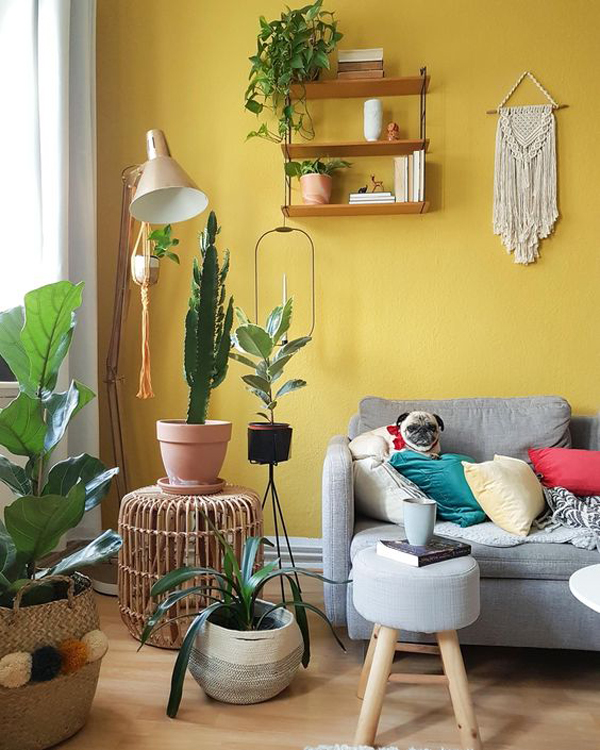 boho-chic-interior-with-yellow-accent-walls