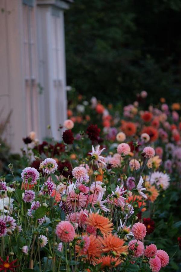 british-floral-garden-design