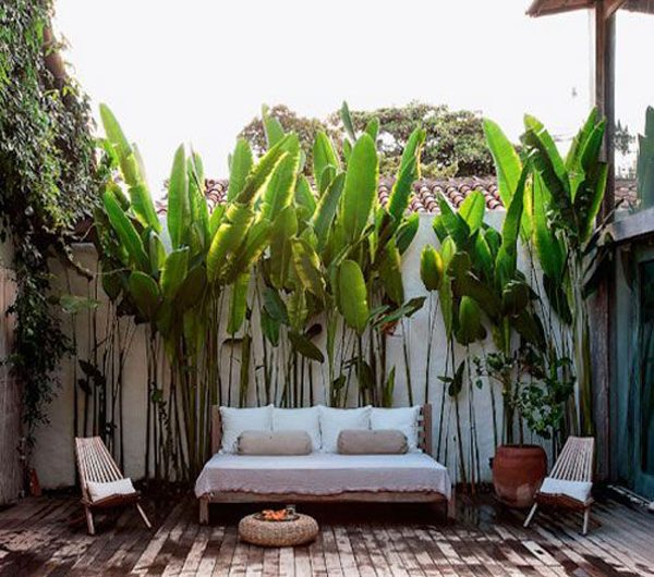 25 Tropical Pool Landscaping Ideas Like A Vacation