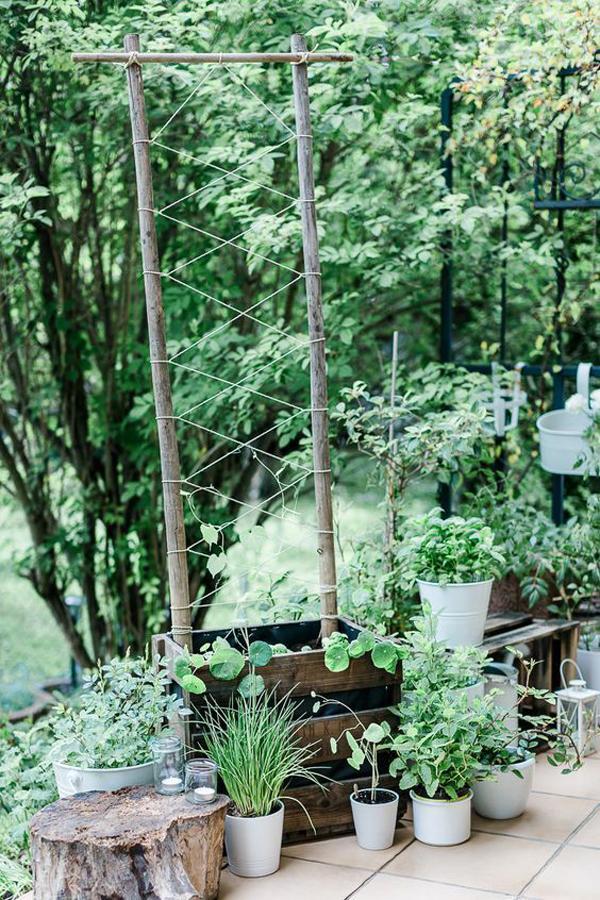 crate-diy-garden-trellis-ideas
