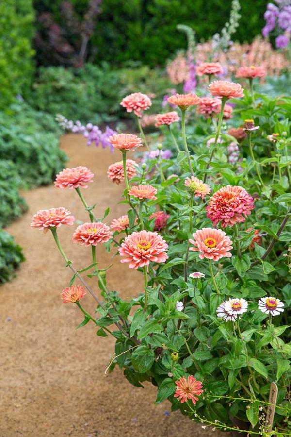 cute-flower-garden-decor-ideas