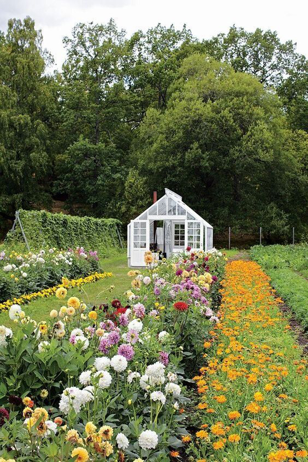 farmhouse-floral-garden-ideas-for-backyard