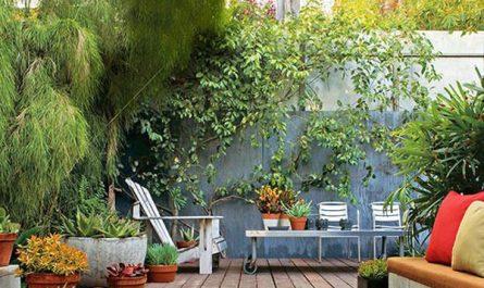modern-small-garden-design
