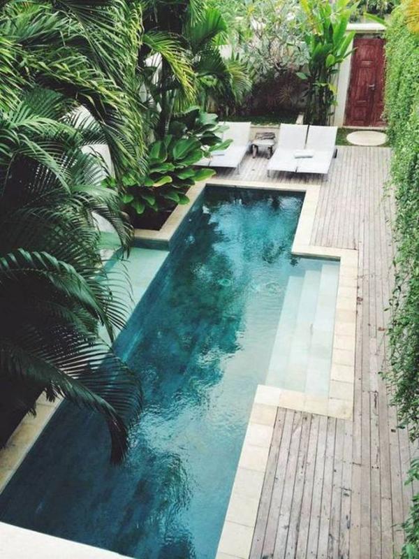 modern-tropical-pool-landscaping