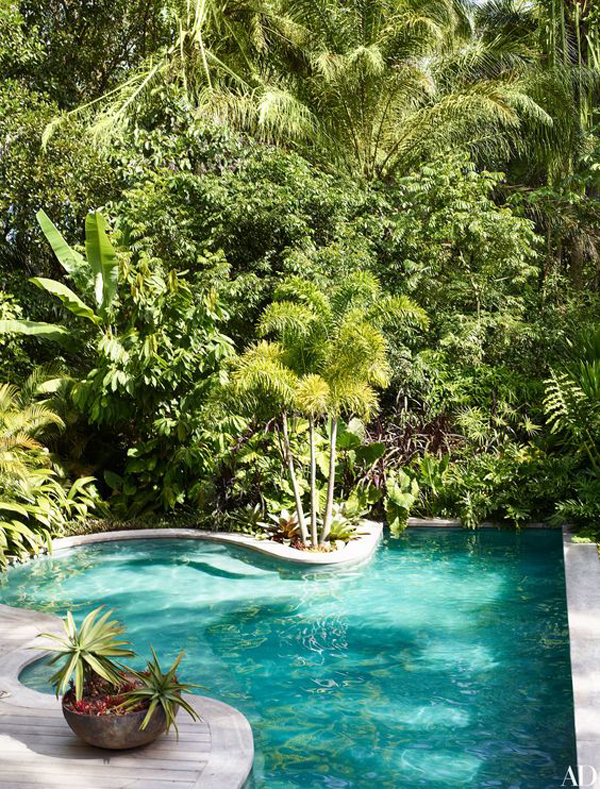 nature-inspired-pool-design-with-tropical-acents
