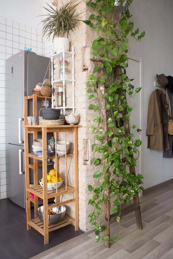 old-diy-ladder-garden-trellis