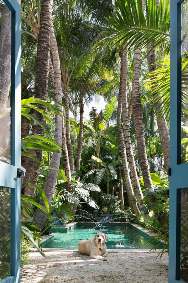 palm-beach-tropical-pool-landscaping