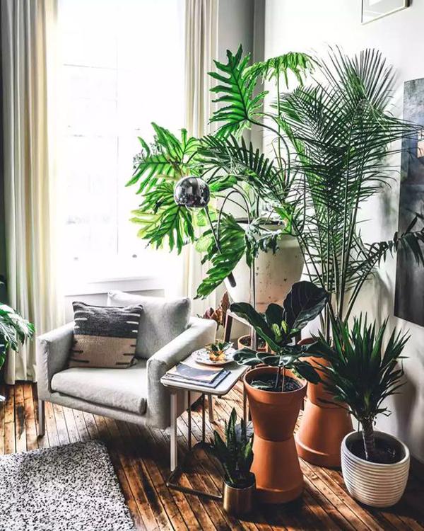 perfect-indoor-outdoor-reading-nook-with-indoor-plants