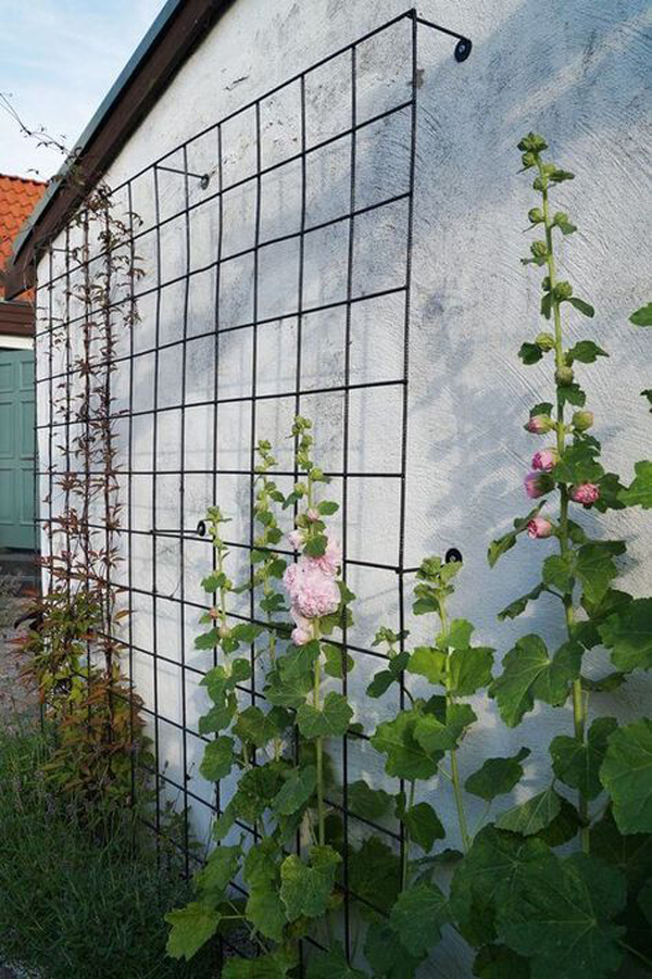 rustic-and-beautiful-garden-trellis-in-the-wall