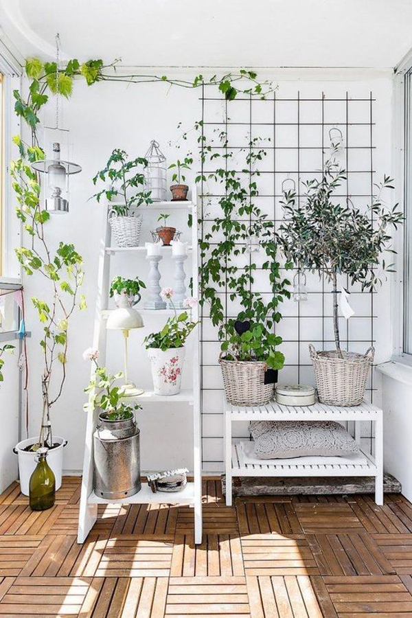 shabby-chic-plant-trellis-for-limited-space