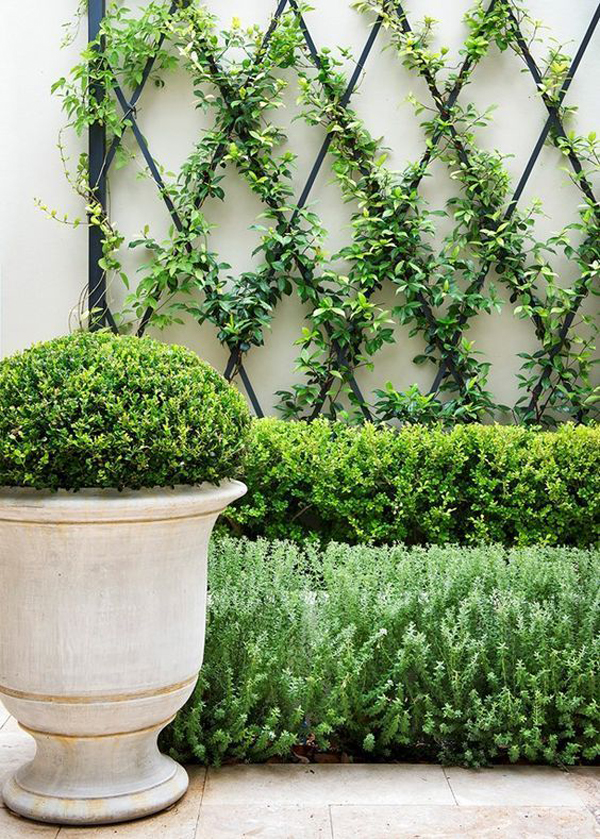 simple-diy-garden-trellis-ideas
