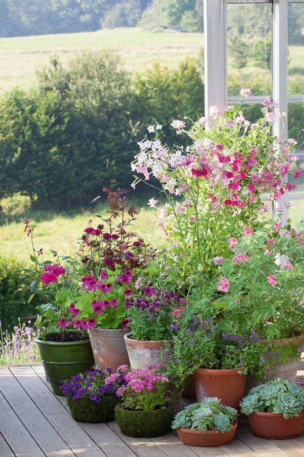 small-garden-plant-decor-with-pots