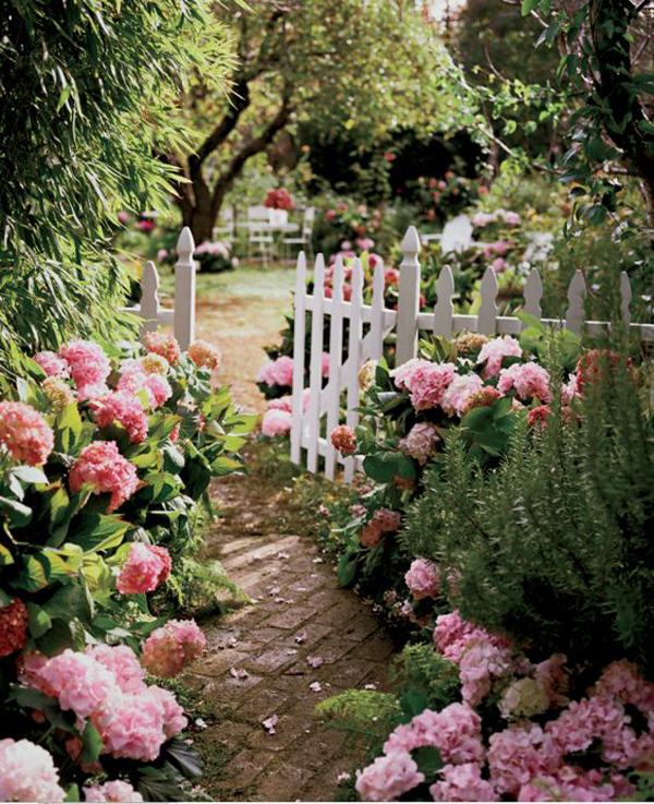 spring-rose-garden-landscapes