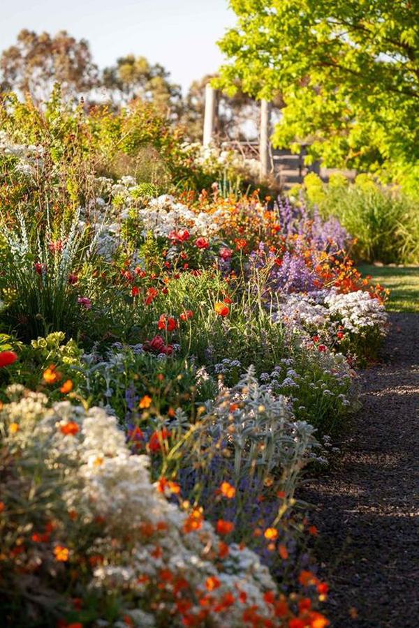 summer-flower-garden-landscapes