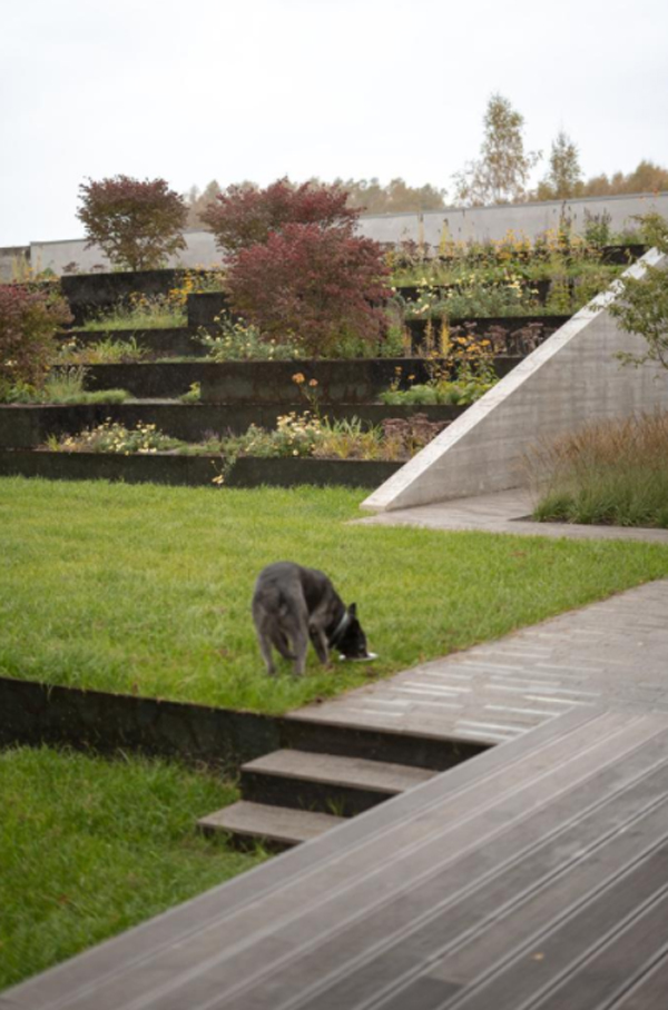 terraced-garden-design