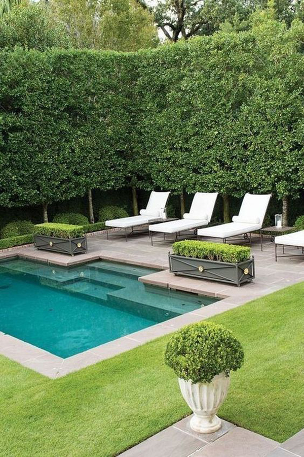 backyard-cocktail-pool-landscaping-ideas