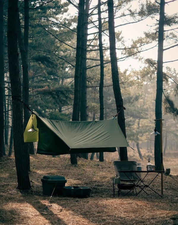 hanging-haven-tents-for-forest-camping