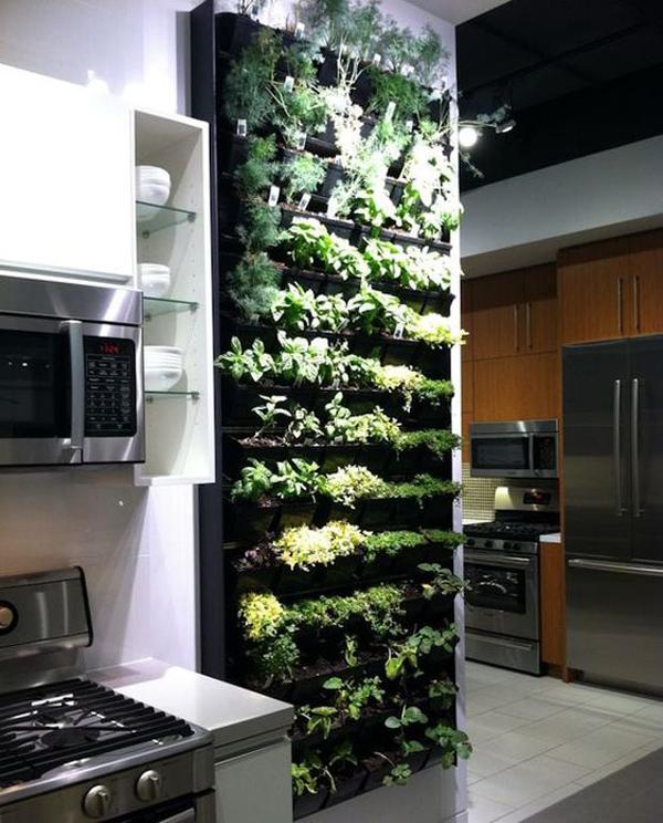 herb-vertical-garden-wall-for-kitchen