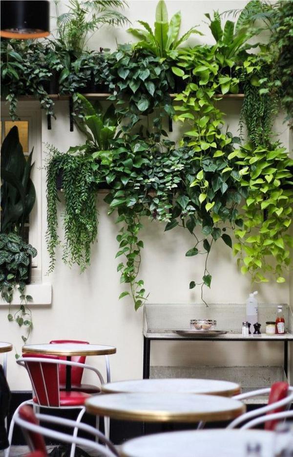 indoor-vines-vertical-garden-wall
