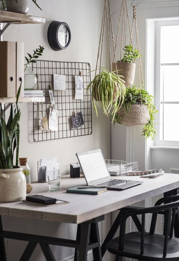 modern-home-office-decor-with-hanging-plant