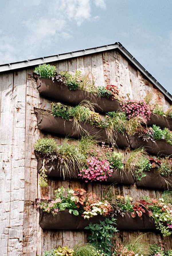 outdoor-vertical-garden-wall-for-small-space