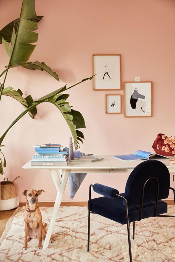 peach-home-office-color-ideas