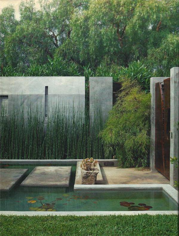 amazing-horsetail-reed-landscaping-ideas