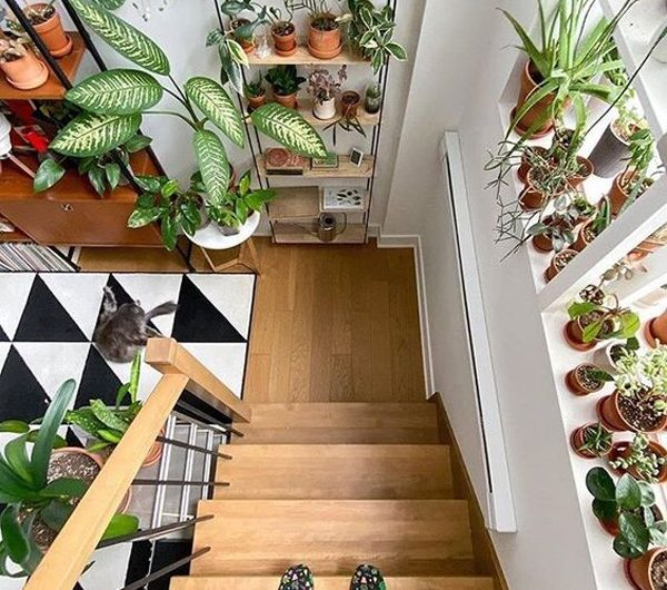 23 Beautiful Staircase Design Ideas With Plants