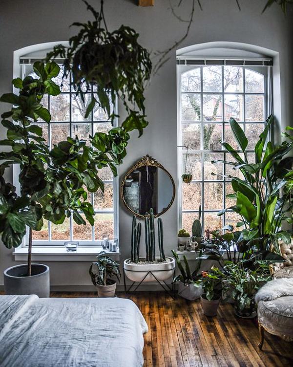 cozy-bedroom-with-indoor-garden