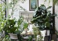 cozy-garden-room-with-dining-space