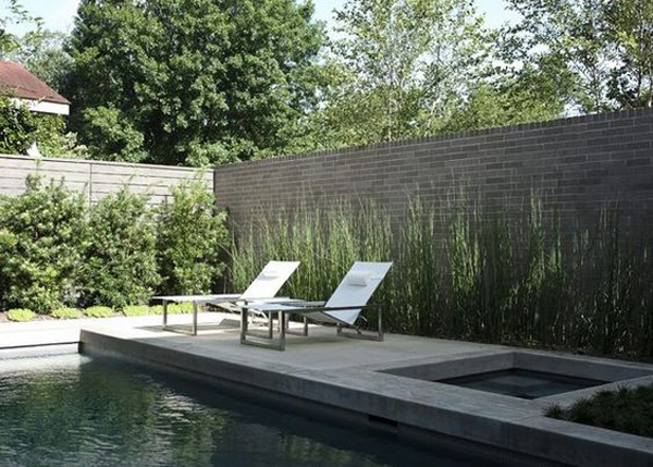 cozy-swimming-pool-with-horsetail-reed-landscape