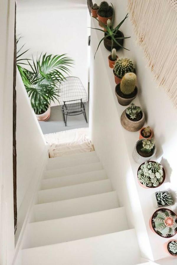 pretty-cactus-staircase-plant-decor