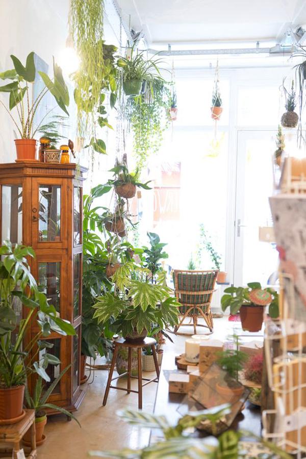 pretty-jungle-interior-styles