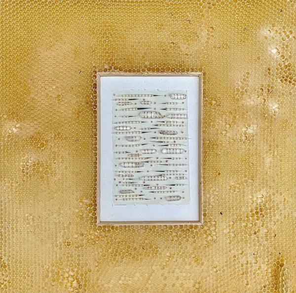 rose-quartz-and=porcupine-quills-bee-artwork