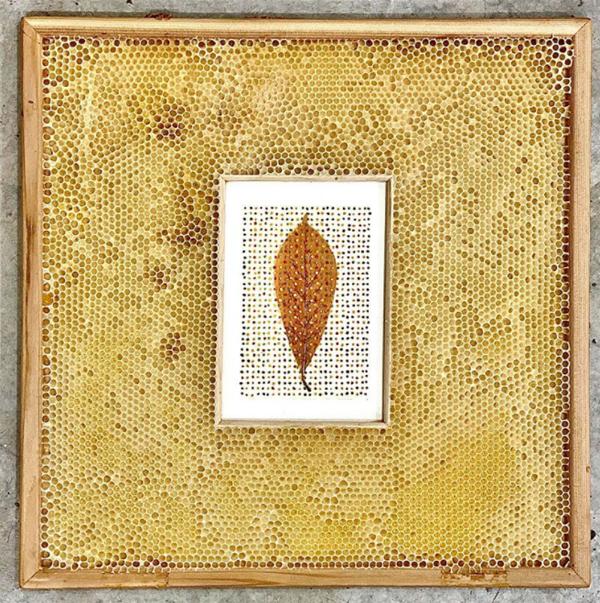tulip-tree-leaf-bee-collaboration-artwork