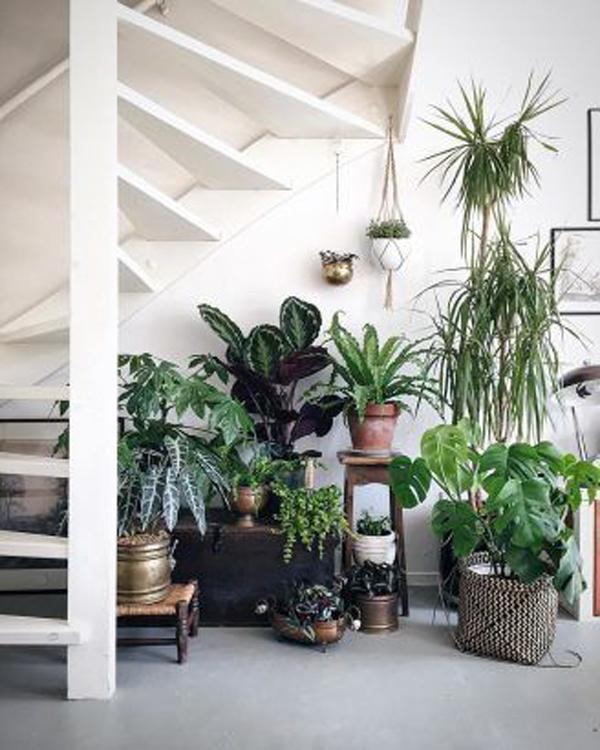 under-stairs-jungle-interior-design