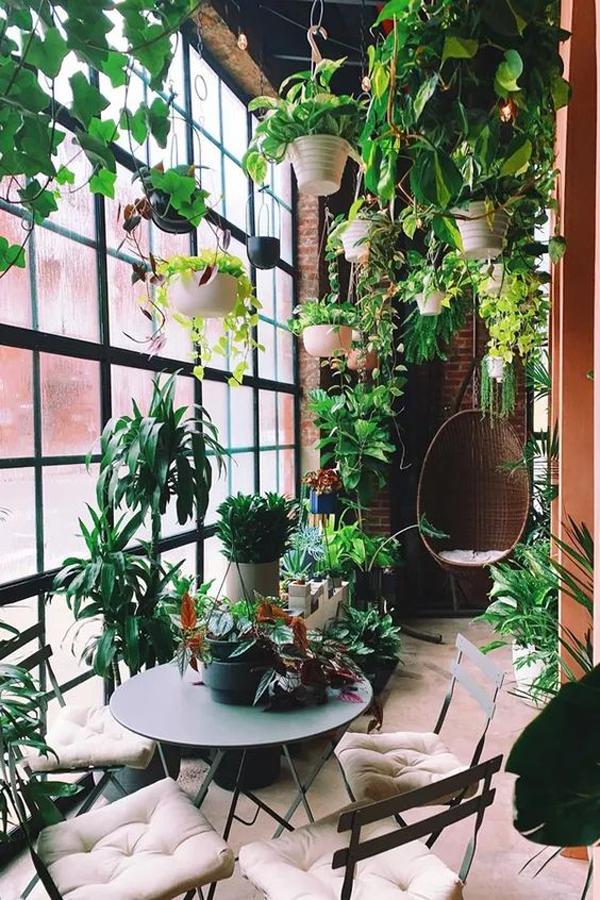 urban-jungle-interior-for-small-space