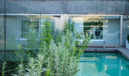 urban-rooftop-garden-with-swimming-pool