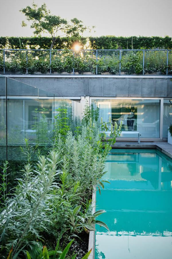 21 Best Rooftop Pool Ideas For Small Space