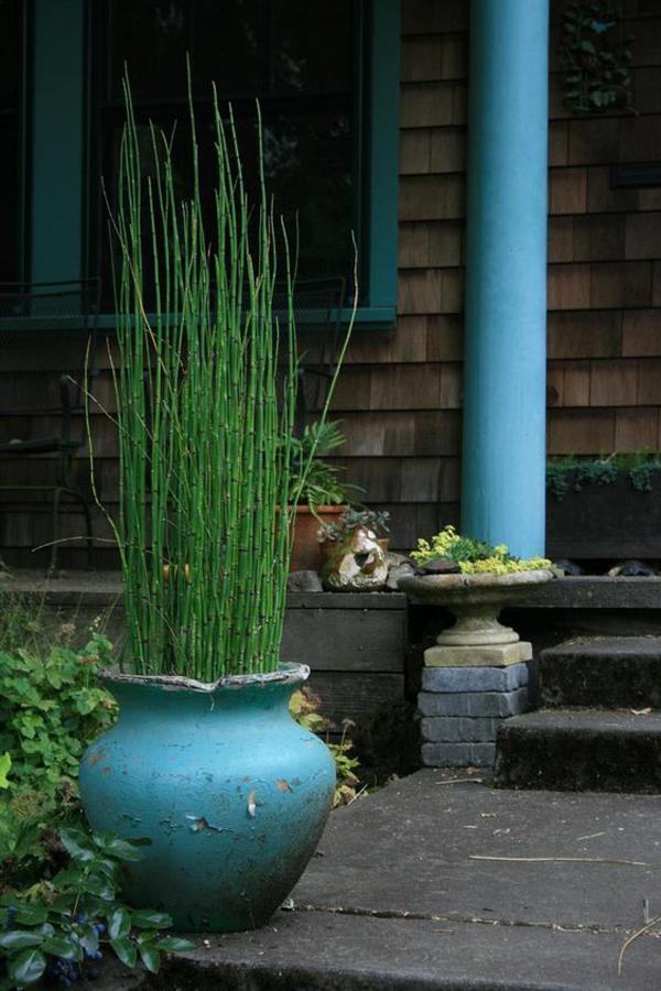 vintage-horsetail-reed-planter-pot-design