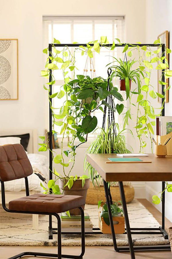 diy-plant-room-partitions