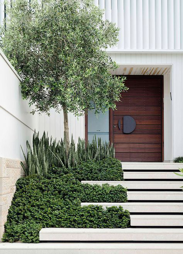 modern-entrance-landscaping-design