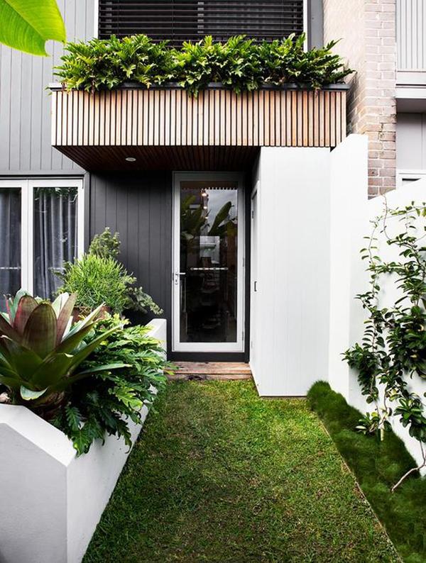 small-tropical-garden-with-entrance