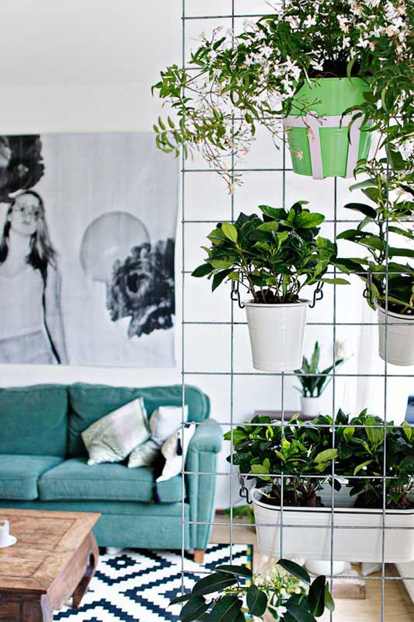 stylish-room-dividers-made-from-hanging-plants